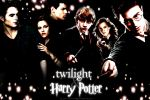 hp and twilight_trios