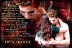 new moon_volterra2