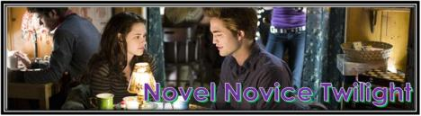 novel-novice-twilight1
