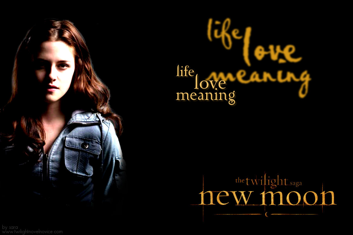 http://novelnovicetwilight.files.wordpress.com/2009/04/new-moon-bella.jpg