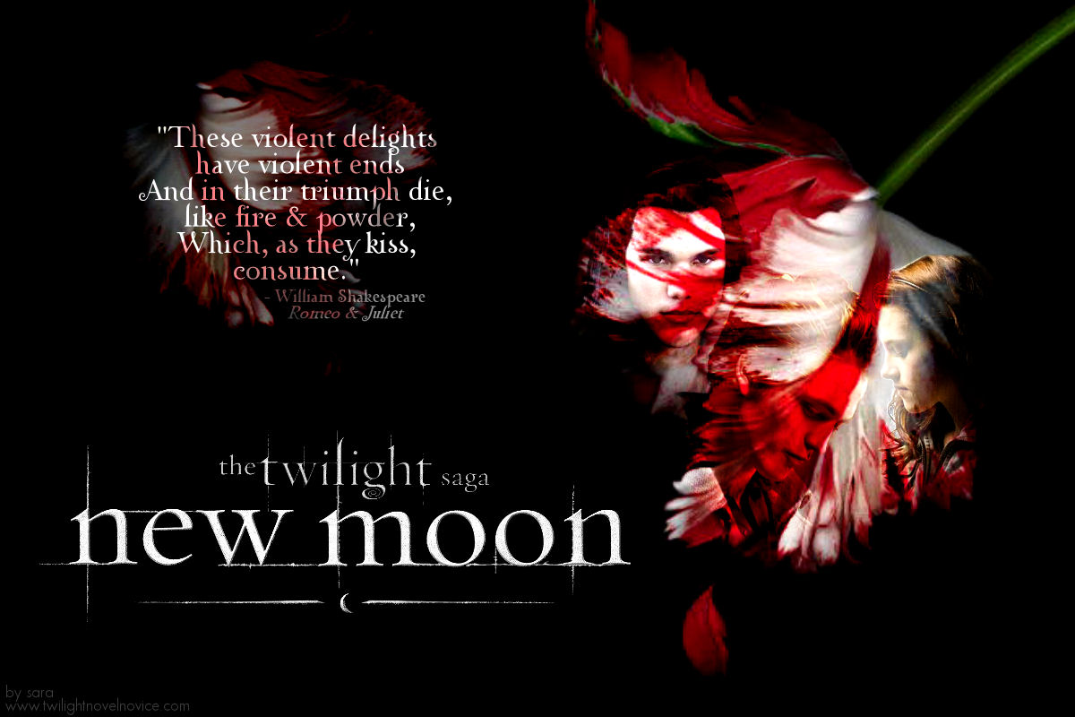 twilight new moon book report