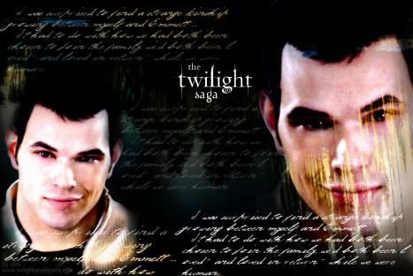 twilight saga_emmett
