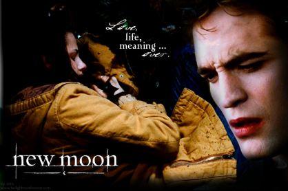 http://novelnovicetwilight.files.wordpress.com/2009/06/new-moon-over.jpg
