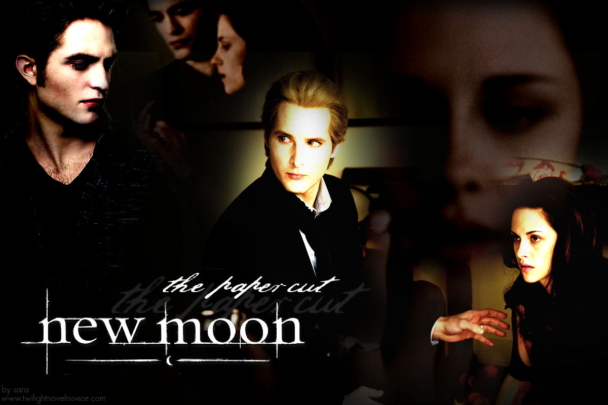 essay book new moon The story behind the writing of new moon a note: i don't pull any punches here, so if you haven't read new moon and you don't want to be spoiled, don't read this writing a sequel is a very different experience than writing a story.