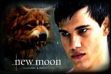 http://novelnovicetwilight.files.wordpress.com/2009/06/new-moon-wolf-jacob.jpg
