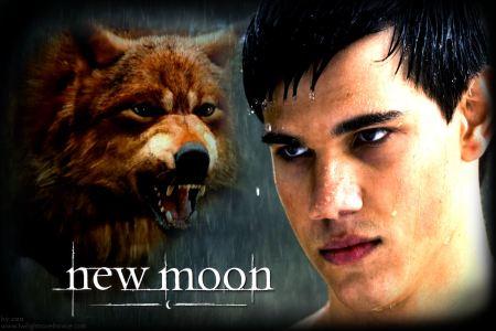 new moon wolf jacob