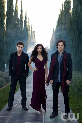 vampire diaries stefan. Vampire Diaries TV show.