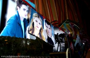 photo banner